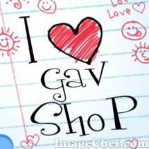 Logo GaV ShoP