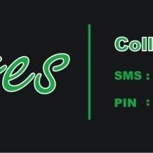 Logo Ayres Collection