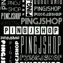 Logo PINGJSHOP
