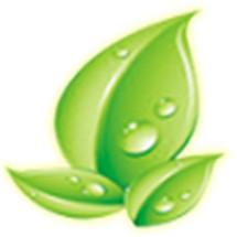 Herbal de Nature Logo