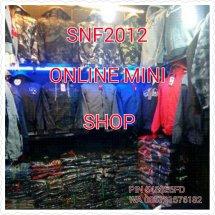 snf2012 Logo