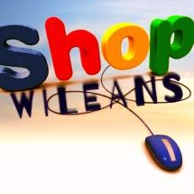 Logo wileansshop