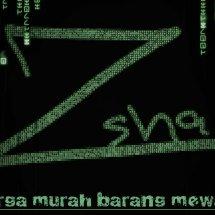 ZSHA shop Logo