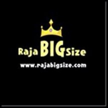 Logo rajabigsize