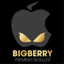 Big Berry Cellular Logo