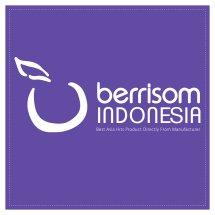 Logo Berrisom Indonesia