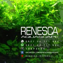 Logo Renesca Aquascape