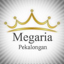 Logo Megaria Store