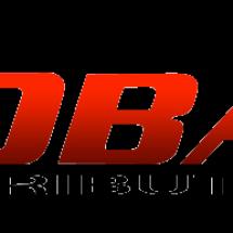 Global link distribution Logo