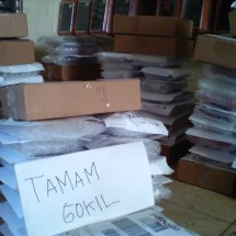 Logo Tamam Gokil