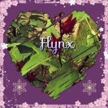 Logo Flynx Shop