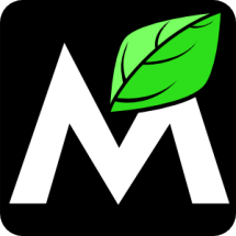 Logo Midztoyz