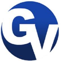 GLOBAL VISINDO Logo