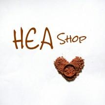 Heasop03 Logo