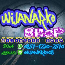 Logo Wijanarko Shop