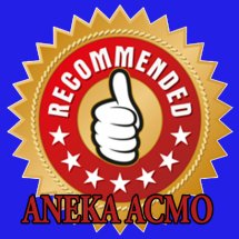 ANEKA ACCMO Logo