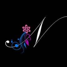 Logo Namina.Shop