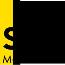Logo SEVEN STEREO