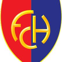 FENDICHANHIN Logo