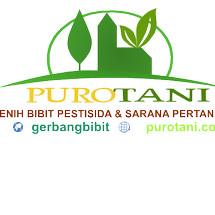 Purotani Logo