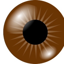 Logo Brown Eyes
