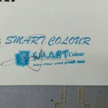 Logo INK SMART COLOUR