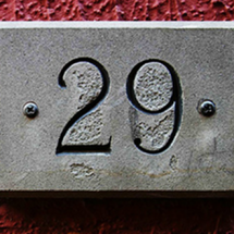 Store Twentynine Logo