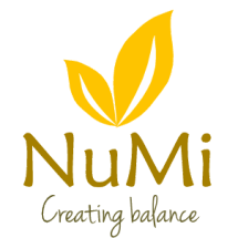 Logo NUMI Center