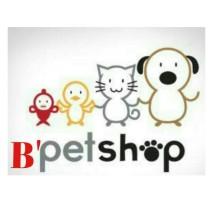 Logo Bintang petshop'