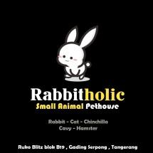 Logo Rabbit Holic