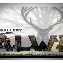 Logo alwisurvival
