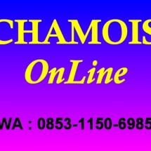 Chamois Online Logo
