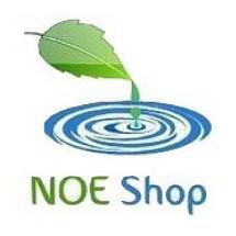 Noe Online Shop Logo