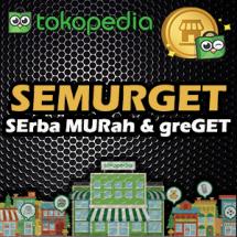 Logo SEMURGET