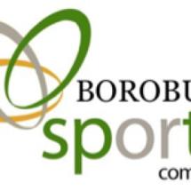 Logo Borobudur Sport