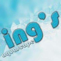 Logo Ings Aquascape (ings)