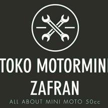 Logo zhidanminimotorsports