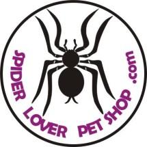 spider lover petshop Logo