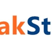 Lapakstore[dot]net Logo