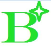 Logo Brandstock