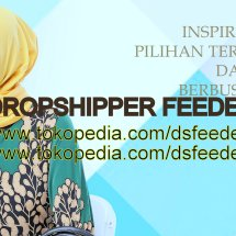 Logo Dropshipper Feeder