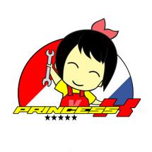Logo Princess K Online