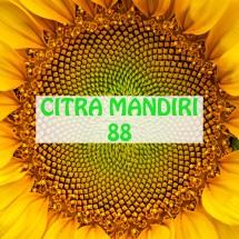 Logo Citra Mandiri 88