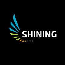 Logo shining Bike