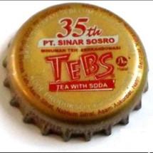 TEBS PRO Logo