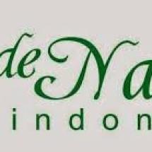 Logo Nurul De Nature