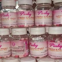 Logo Pelangsing PINKY