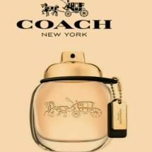 parfumasli. Logo