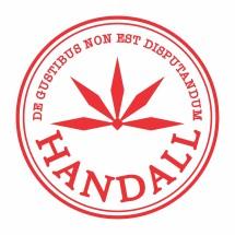 Logo HANDALLSTORE