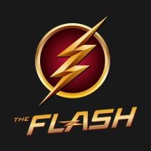 Logo THEFLASH ACC